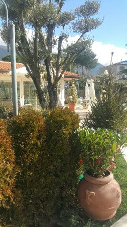 Rivotorto, Italy: 20180210_114137_large.jpg