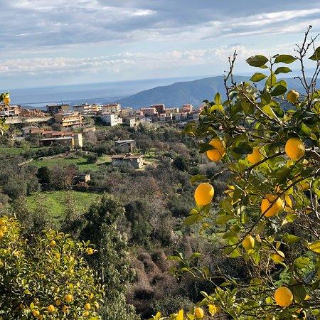 Ilbono, Italie : photo0.jpg