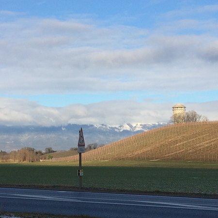 Ibis Budget Archamps Porte de Geneve: photo3.jpg