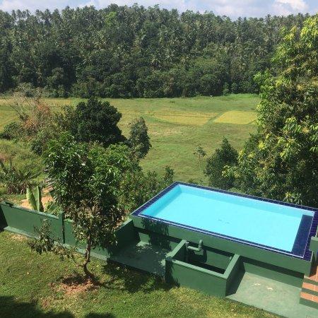 Weweldeniya, Sri Lanka: photo0.jpg