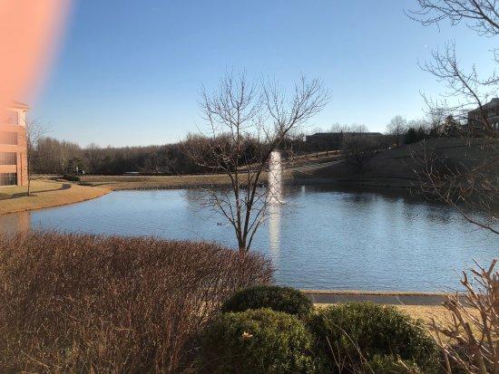 Out door winter photo of back pond hilton garden inn charlottesville charlottesville for Hilton garden inn charlottesville