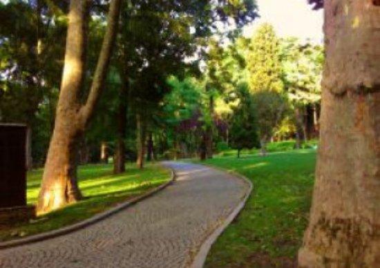 Gulhane Park: harika