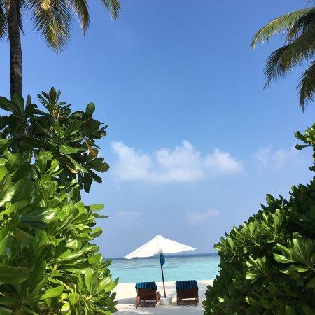 Velassaru Maldives: photo0.jpg