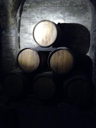 Montepulciano, Italia: barrels