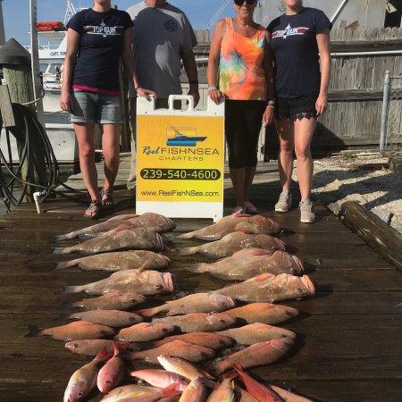 Reel Fish N Sea Deep Sea Fishing Charters: photo0.jpg