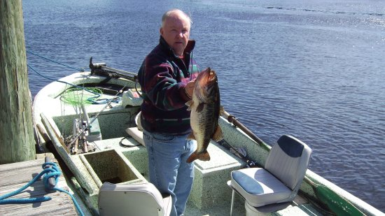 DeLand, FL: Nice Bass shown on return to Hontoon dock.