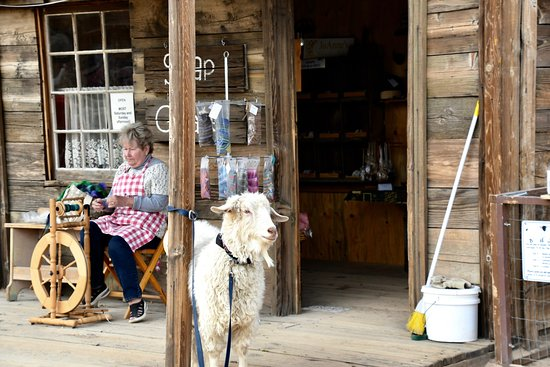 Pioneertown, CA: Spinning wool
