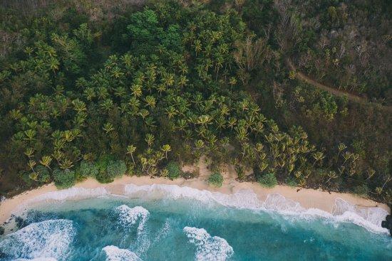 Foto de Turtle Islands
