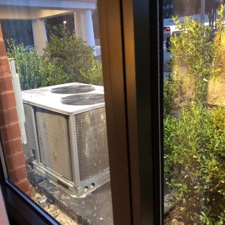 Hardeeville, SC: photo2.jpg