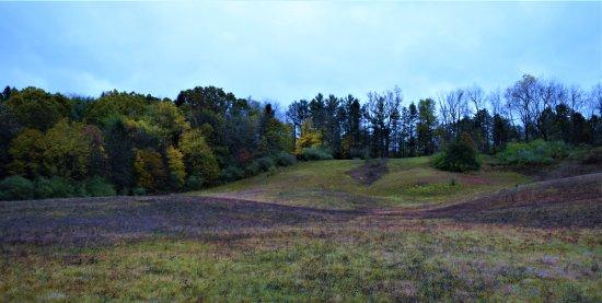 Ionia, ميتشجان: rolling hills