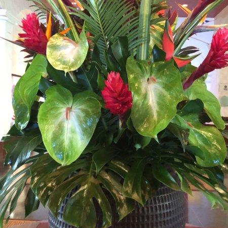 The Royal Hawaiian, a Luxury Collection Resort: photo5.jpg