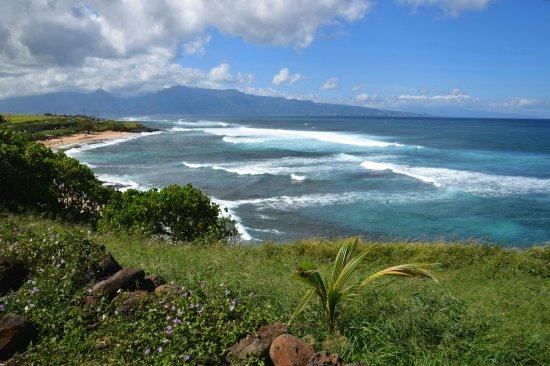 Maui Tasting Tour