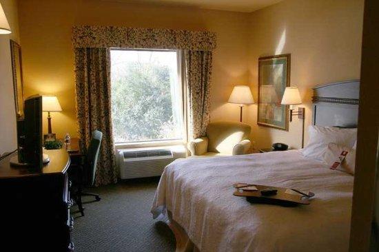 Hampton Inn & Suites Fredericksburg: Guest room
