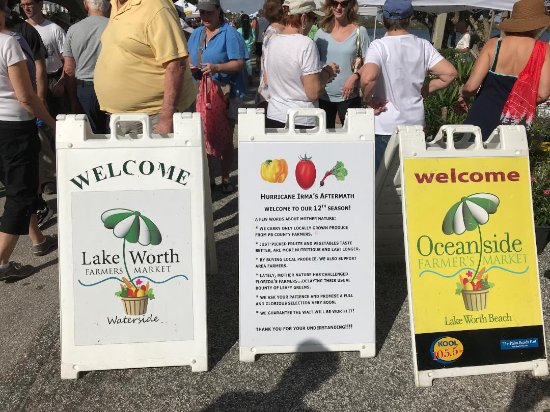 Lake Worth Farmer's Market: Signs that greet you