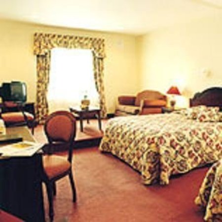 Fitzgerald's Woodlands House Hotel: Guest room