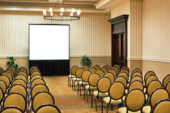 Sheraton Baltimore Washington Airport Hotel - BWI : Meeting room