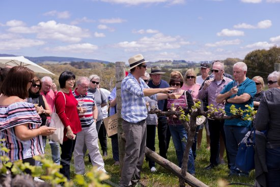 ออเรนจ์, ออสเตรเลีย: Vino Express guests at Swinging Bridge Wine, with vigneron Tom Ward