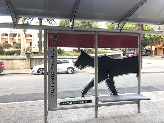 Travelodge Hotel Perth: ホテル前のレッドCATバス停