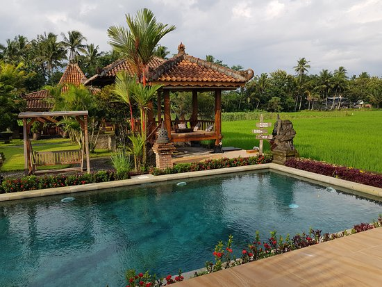 Hotels near Borobudur Temple, Indonesia. - Booking.com