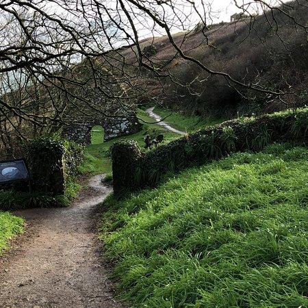 Ardmore, Irlanda: photo1.jpg