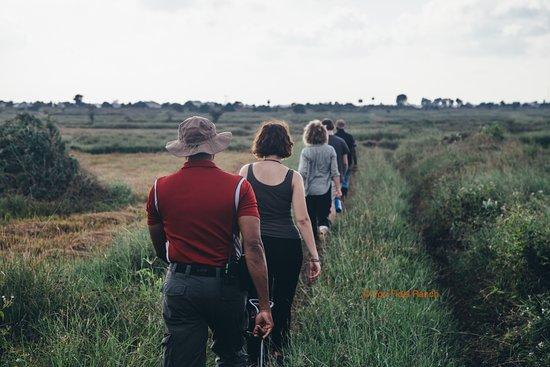 Oddamavadi, Sri Lanka: Casual trek, photographic safari... a bush walk: we offer them!