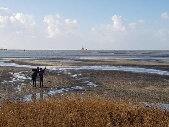 West-Terschelling, The Netherlands: 20180212_110241_large.jpg