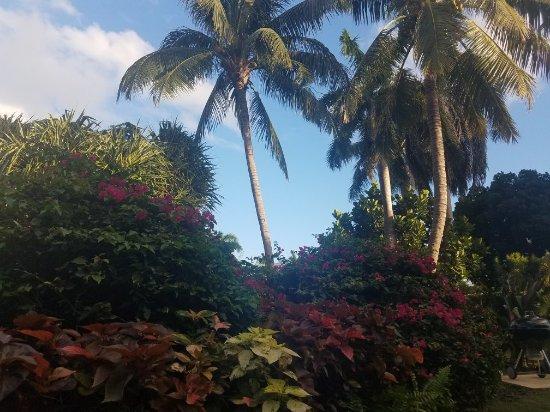 Plantana Condominiums: 20180204_173147_large.jpg