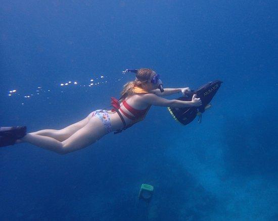 Aruba Bob Snorkeling: Aruba Bob!