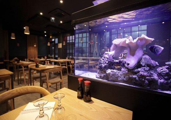 Yamato talence restaurant bewertungen telefonnummer for Restaurant talence