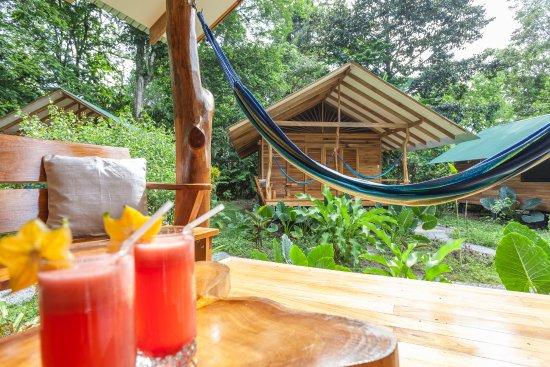Cocles, Kosta Rika: deck
