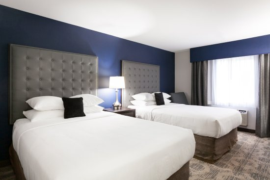 Red Lion Inn & Suites Auburn/Seattle: Two Queen Beds