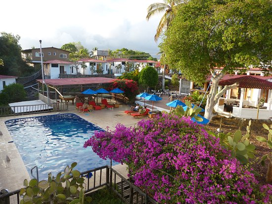 Hotel Fiesta: Pool and Garden