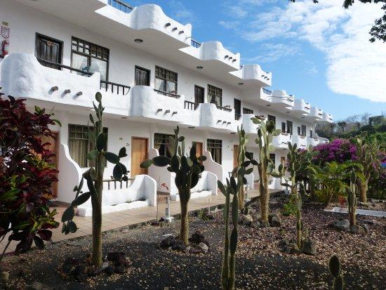 Hotel Fiesta: Hotel building from cactus garden