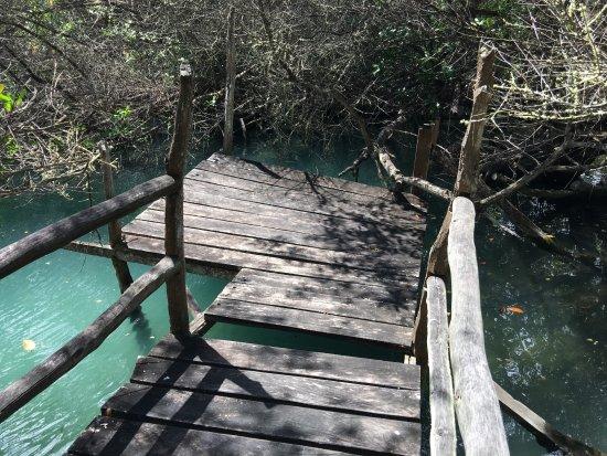 Hotel Fiesta: Rotten boardwalk to the lagoon