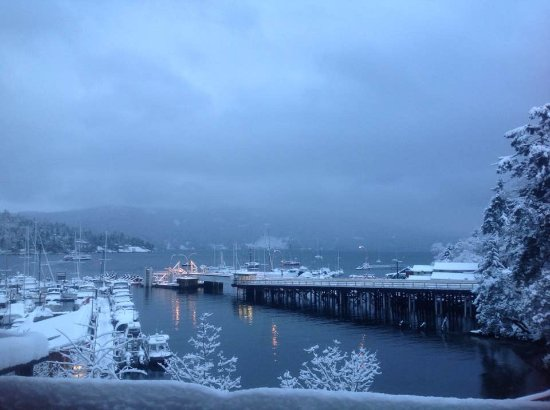 Brentwood Bay Resort & Spa: View from our deck, February 2017