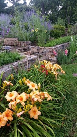 Lovettsville, Βιρτζίνια: Hotel Garden area