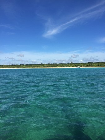 Paradise Catamarans: First spot we swam and snorkeled