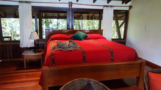 La Paloma Lodge: 20180208_155724_large.jpg