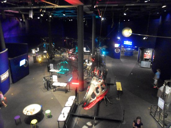 Museum of Science and History : view from above