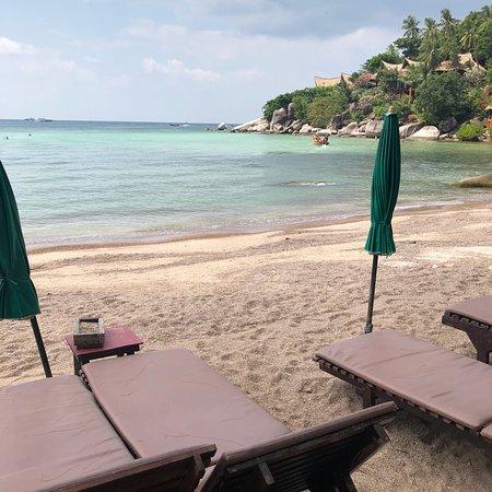 Palm Leaf Resort: photo1.jpg