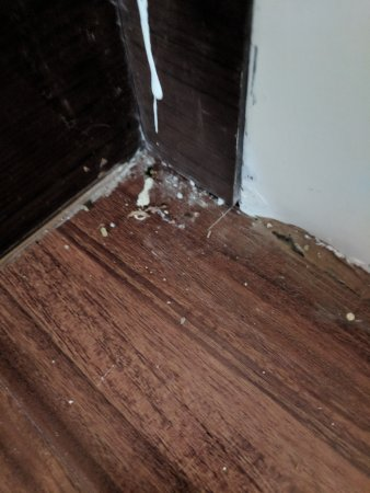 Residence Inn Secaucus Meadowlands: Filthy floor