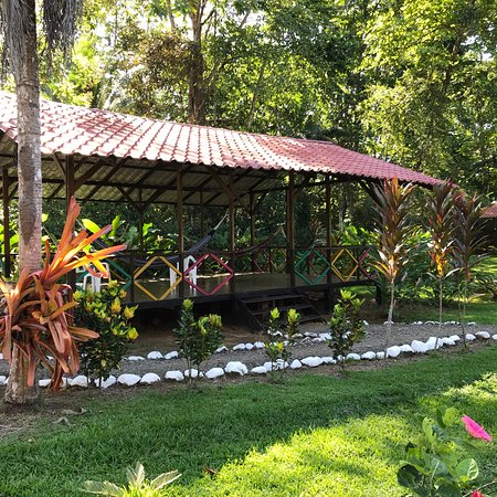 Osa Peninsula, Costa Rica: photo0.jpg