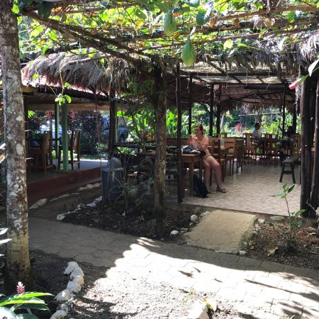 Osa Peninsula, Costa Rica: photo1.jpg