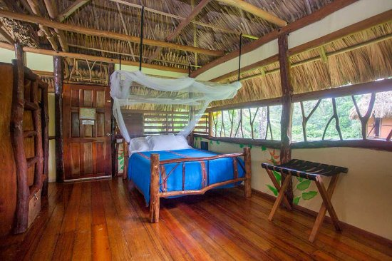Cotton Tree Lodge: Deluxe Cabana Interior