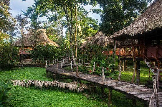 Cotton Tree Lodge: 11 cabanas are arranged like a small village, connected by wooden boardwalks.