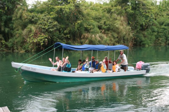 Cotton Tree Lodge: Go on a boat tour right from the Cotton Tee Lodge dock.