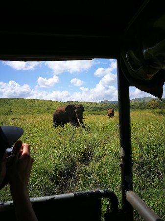 Heritage Day Tours & Safaris: IMG_20180208_092024_large.jpg