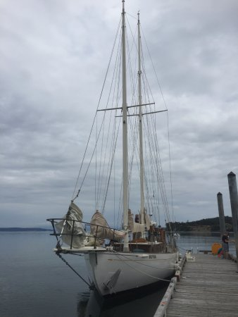 Coupeville, WA: Suva at rest