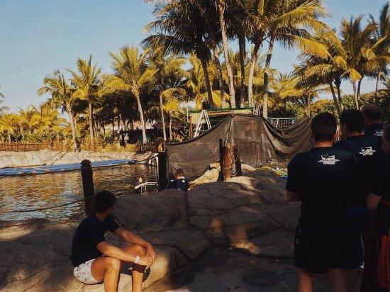 uShaka Marine World: Ocean walker