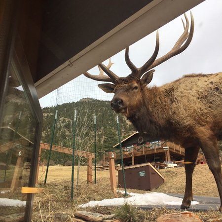 McGregor Mountain Lodge: photo1.jpg